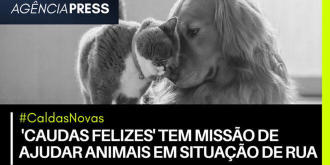 CaldasNovas | 'CAUDAS FELIZES' TEM MISSÃO DE AJUDAR ANIMAIS EM SITUAÇÃO DE RUA