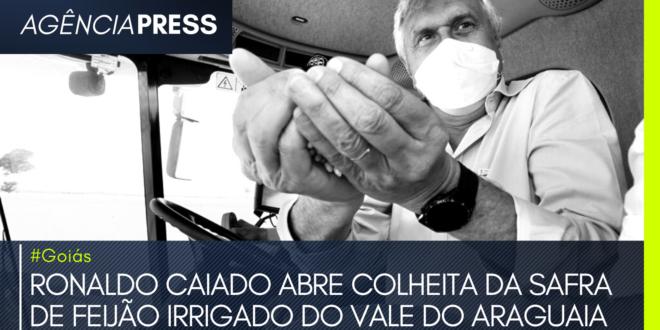 #Goiás | RONALDO CAIADO ABRE COLHEITA DA SAFRA DE FEIJÃO IRRIGADO