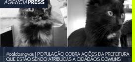 #caldasnovas   POPULAÇÃO COBRA AÇÕES DA PREFEITURA QUE ESTÃO SENDO ATRIBUÍDAS À CIDADÃOS